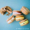 ショッピングひんやり 【Caffarel カファレル】 フレッドドルチェ 6個セット フレーバー全4種 洋生菓子