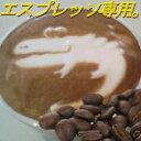 ■送料無料■【エスプレッソ用】コスタリカ・SHB・コーラルマウンテン 生豆時450g(焙煎後360g前後)