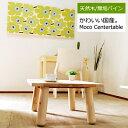 九州の家具工房が作る無垢パインのローテーブル。丸脚が小さなお子様にも安心です。