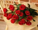 赤いバラの花束20本【画像確認サービス有】【楽ギフ_メッセ入力】【楽ギフ_包装】【フラワーギフト】【クリスマス】 ギフト 贈り物 プレゼント