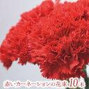 お正月 お年始 赤いカーネーションの花束 10本【フラワーギフト】ギフト 贈り物 プレゼント お祝い