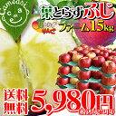 <2010年★一番人気品種ご予約開始>本当に美味しい葉とらずりんご★葉摘みをしないこだわり栽...
