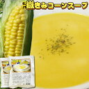 嶽きみ 青森【嶽きみ コーンスープ 2袋お試しセット】程よい...