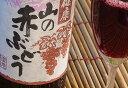 夏ばてに!赤ぶどうジュース♪青森県産【山の赤ぶどう720ml】 [※SP] 02P05Nov16