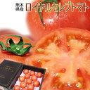 送料無料 熊本県八代産 糖度10度以上 【ロイヤルセレブトマト 特選 11〜16玉】[化粧箱入] 塩トマト 完熟トマト の濃厚な甘みと凝縮された旨みは、まさにセレブ。マヨネーズも、塩も、要りません![※常温便][※他商品との同梱不可]