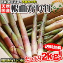 たけのこ 送料無料 今が旬 【天然根曲がり竹(生)2kg】 今しか食べれない東北伝統山の幸!!灰汁が