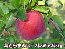 《今期ご予約開始!!》不動の人気NO.1★ジューシーな果汁はやっぱり「フジ」!!《話題の葉とらずりんご》青森りんご 「葉とらず」栽培だから本当に美味しい!もぎたては蜜入り期待大の大人気品種「フジ」!!太陽の恵みを葉でいっぱいに浴びて育ちます♪もぎたては蜜入り期待大!昨シーズン2万箱完売【葉とらずふじ5kg プレミアム】[0827秋先10]