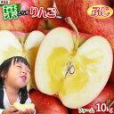 りんご の常識を変える★葉とらず栽培 本場青森ゴールド農園 送料無料 【葉とらずりんご ふじ10kg