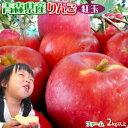 りんご 【青森県産りんご 紅玉 ファーム2kg以上】7-10玉 家庭用 送料無料 ゴールド農園 りんご リンゴ 訳アリ アップルパイ ※産地直送のため同梱不可