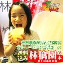りんご本来の美味しさを味わって♪毎日ゴクゴク飲みたいから紙パック(^0^)/ 本当に美味しいストレートリンゴジュース【林檎園】1箱1000g×6本入[送料込] 1滴の水も、1gの砂糖も使っていません![※SP]【PUP10F0323】