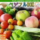 ポイント10倍! 野菜 フルーツ 詰め合わせ セット 【