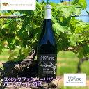 カナダワイン Henry of Pelham Baco Noir Reserve バコノワールリザーヴ ヘンリーオブペルハム 【赤ワイン フルボディ】