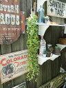 イミテーショングリーン(ハンギング) ■ アメリカ雑貨 アメリカン雑貨 アメリカ 雑貨 インテリア