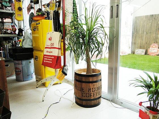 コーヒー木樽(中だる)うす茶★「楽天1位」★アメリカ雑貨アメリカン雑貨木箱樽ゴミ箱人気おしゃれ