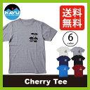 <残りわずか!>【20%OFF】カブー チェリーTee 【送料無料】 【正規品】KAVU Tシャツ 半袖 男性 メンズ Cherry Tee