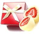 ●プレミアムショコラ(レッドボックス)プチギフトフリーズドライストロベリーチョコ・ウェディング・チョコノベルティ・販促・赤いBOX・チョコレート・激安・苺チョコ/大量購入可/バレンタイン/義理チョコ