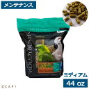 賞味期限:2021/9/20【ラウディブッシュ】デイリーメンテナンスミディアム 44oz(1.25kg)