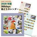 【2020年版】366days 鳥どりカ...