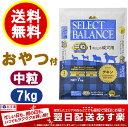 【送料無料】【あす楽対応】セレクトバランス アダルト チキン 中粒 7kg 1才以上の成犬用【Select Balance セレクト・バランス (成犬用)】