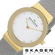 スカーゲン腕時計 SKAGEN時計 SKAGEN 腕時計 スカーゲン 時計 レディース/シルバー 358SGSCD [人気/新作/ブランド/防水/ステンレス ベルト/シルバー/ゴールド][送料無料]