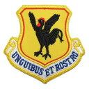 【ミリタリーパッチ】18th Wing 第18航空団 カラー ベルクロ付き