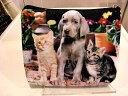 ネコ・犬ポーチプリントポーチ!!【ゆうパケットメール便配達】【ポスト投函配達】【配達指定配達はできません】