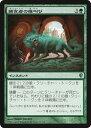 マジック:ザ・ギャザリング 捕食者の雄叫び コンスピラシー CNS   ギャザ MTG マジック・ザ・ギャザリング 日本語版 インスタント 緑