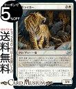MTG マジック:ザ・ギャザリング 猟匠ライガー アンコモン イコリア:巨獣の棲処 IKO マジック:ザ・ギャザリング | ギャザ MTG マジック・ザ・ギャザリング 日本語版 クリーチャー 白