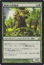 マジック:ザ・ギャザリング(MTG)森林の庇護者/Timber Protector (R)/ ローウィン / LRW / Magic: Th...