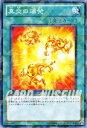 遊戯王カード 真炎の爆発 破滅の邪龍 ウロボロス!! (DT14) YuGiOh!