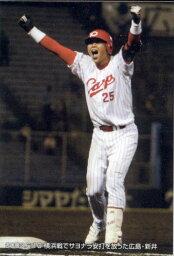 カルビー2004 プロ野球チップス チェックリスト No.C-3 サヨナラ安打(新井貴浩)