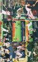 松井秀喜 ホームランカード 202号(1999年40号)〜219号(2000年15号)