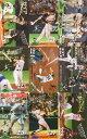 松井秀喜 ホームランカード 237号(2000年33号)〜220号(2000年16号)