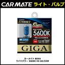カーメイト GIGA(ギガ) BD55 ワイドパワー 5600K H4 60/55W ハロゲンバルブ
