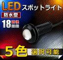 小玉 LED スポットライト 5色選択可能 【CAROZE】