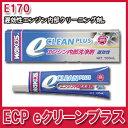 [メーカー取り寄せ]WAKO'S(ワコーズ)ECP eクリーンプラス 品番:E170