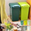 ゴミ箱 ecoコンテナスタイル 45L おしゃれ 分別 45リットル 分別スリム ふた付き 屋外 キッチン ごみ箱 フタ付き ダストボックス ダストBOX エココンテナ