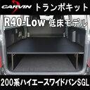 R40-bike-200w-sgl-ic