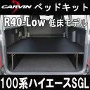 R40-low-100-sgl-icon