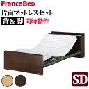 【送料無料】 電動ベッド リクライニング セミダブル 電動リクライニングベッド 〔レックス