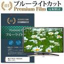 東芝 REGZA 43RZ630X [43インチ] 機種で使える ブルーライトカット 反射防止 液晶TV 保護フィルム メール便送料無料