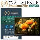 【メール便は送料無料】ステイヤー GRANPLE TV32HDD1T[32インチ]機種で使える 強化ガラス と 同等の 高硬度9H 液晶TV 保護フィルム