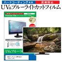 DXアンテナ LVW19LE2 [19インチ] 機種で使える ブルーライトカット 反射防止 指紋防止 液晶TV 保護フィルム メール便送料無料