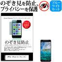 APPLE iPhone 5s 4インチ のぞき見防止 上下左右4方向 プライバシー 覗き見防止 保護フィルム 反射防止 保護フィルム メール便送料無料