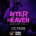 Cz TIGER / AFTER HEAVEN - Mixed By DJ GURI