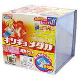 KOTOBUKI キンギョ・メダカ飼育セット[DA]【D】【0530pefl】【RCP】