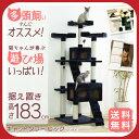 猫タワーねこタワーキャットランド爪とぎおしゃれ置き型]【D】【RCP】