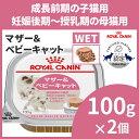 【エントリーでポイント4倍】ロイヤルカナン 猫 FHN ウェット ベビーキャット 100g×48個セ