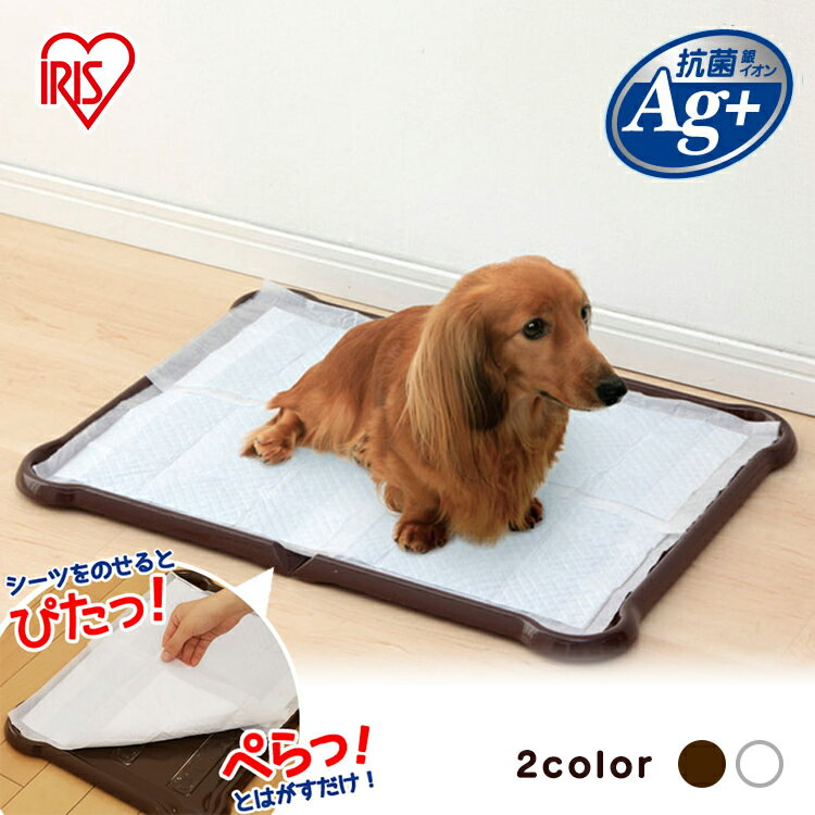 3%OFFクーポン対象シーツぴたっとトレーワイドP-SPTWホワイトブラウン犬トイレトイレトレートイ