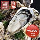 牡蠣 訳あり 送料無料 宮城産 殻付き牡蠣 5kg